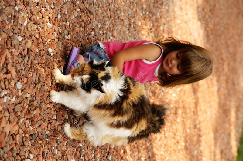 Free Pretty Kitty Stock Image - 1679891