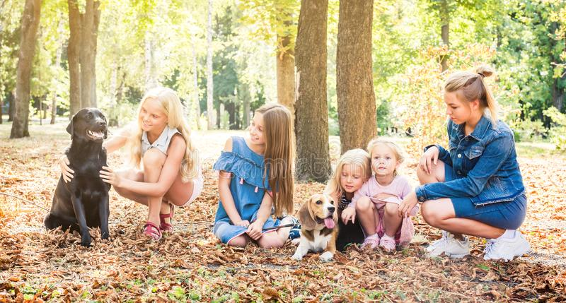 Little kids and girl sitting with dogs in a park stock photo