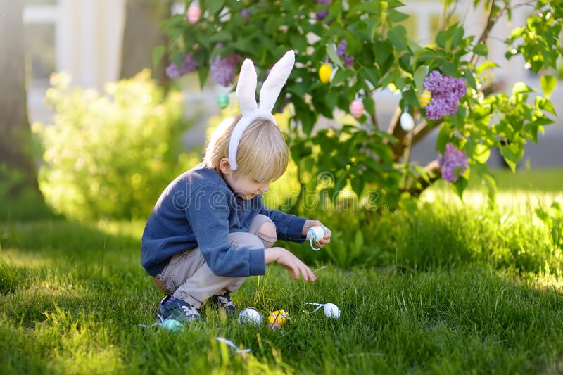 Pretty little boy wearing bunny ears hunting for easter eggs in spring park on Easter day royalty free stock image