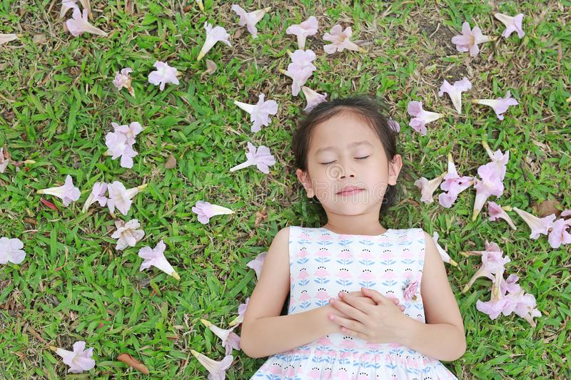 Pretty little girl sleeping on green grass with fall pink flower in the garden outdoor stock image