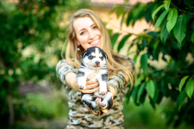 Pretty little husky puppy outdoor in womans hands. Little prety husky puppy outdoor in womans hands royalty free stock photography