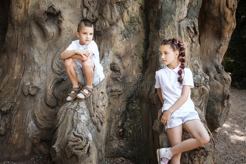 Small boy and girl by the tree. Pretty lovely small girl with pigtails leaning on the tree and a boy wearing white shirt sitting on it in the park royalty free stock image