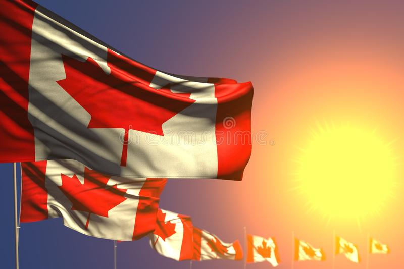 Cute national holiday flag 3d illustration - many Canada flags on sunset placed diagonal with selective focus and place for your. Pretty many Canada flags on stock illustration