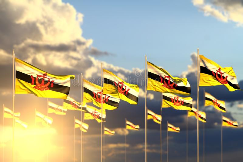 Pretty national holiday flag 3d illustration - many Brunei Darussalam flags on sunset placed in row with selective focus and. Wonderful many Brunei Darussalam stock illustration