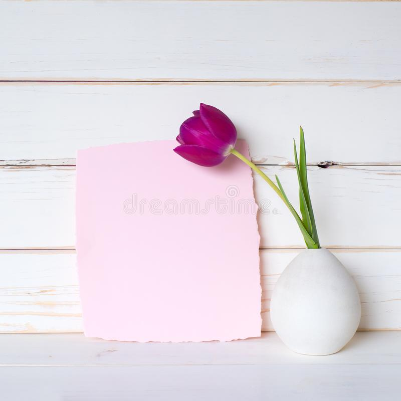 Pretty Pink Blank Card with a Purple Tulip in Gray Vase on a table and against a White Board Wall Background with room or space fo stock image