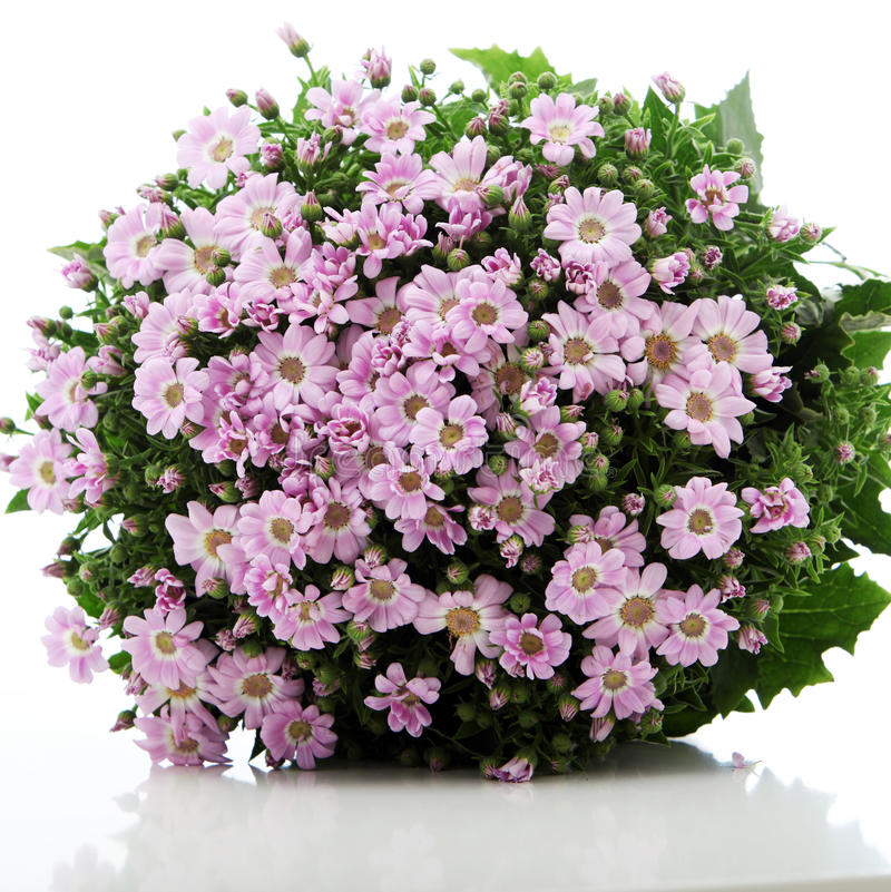 Download Pretty Pink Floral Bouquet stock image. Image of simple - 24045095