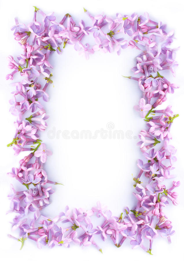 Pretty Romantic Lilac Frame Stock Photo - Image of background ...