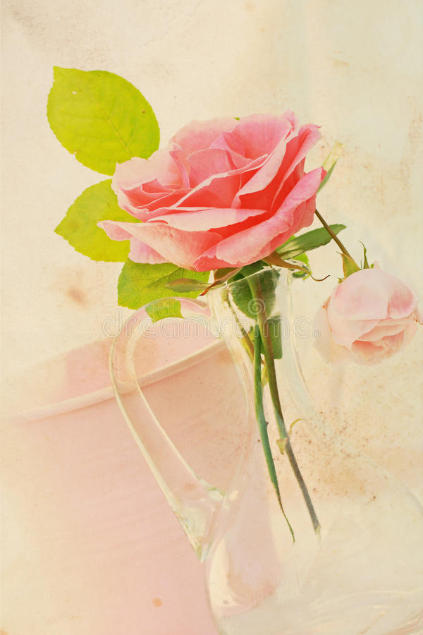 Free Pretty Rose Vintage Background Royalty Free Stock Photography - 26238977