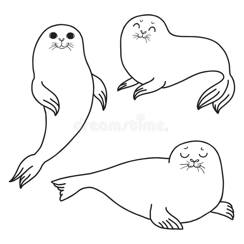 Free Pretty Seals Isolated On White. Vector Set Of Marine Mammal. Stock Photos - 110446833