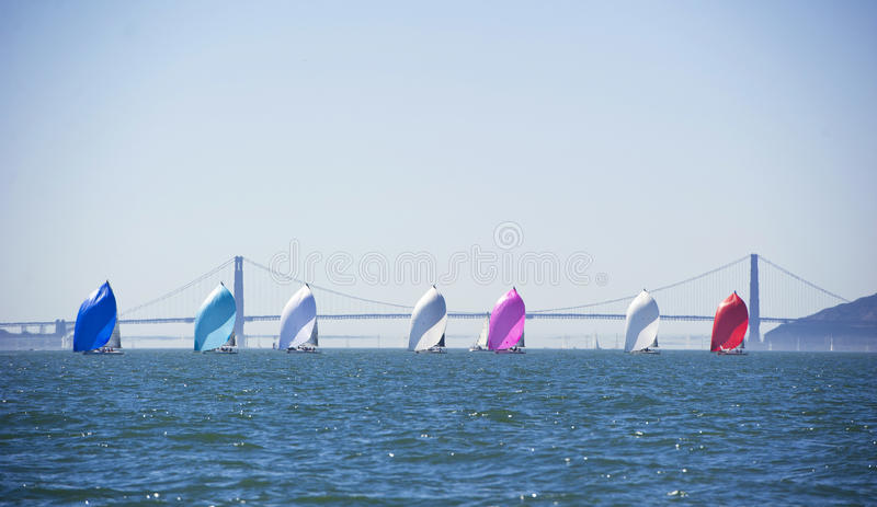 Pretty spinnakers in a row on sailboats. Racing sailboats in front of the golden gate bridge royalty free stock photos
