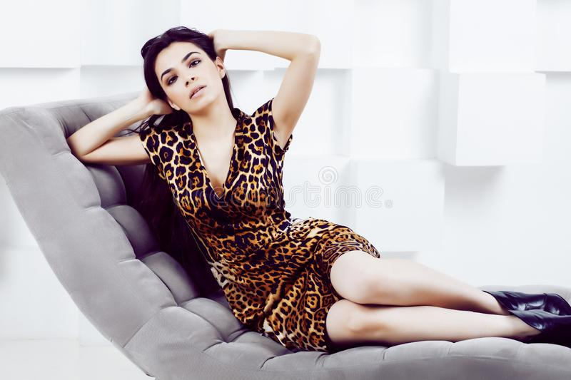 Pretty stylish woman in fashion dress with leopard print in luxu. Ry rich room interior, lifestyle people concept, modern brunette stock images