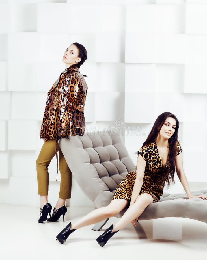 Pretty stylish woman in fashion dress with leopard print togethe. Pretty stylish women in fashion dress with leopard print together in luxury rich room interior royalty free stock photos
