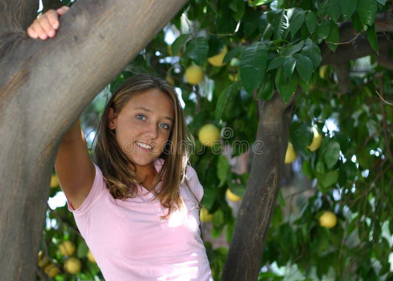 Download Pretty teenage girl stock image. Image of teenager, young - 145775