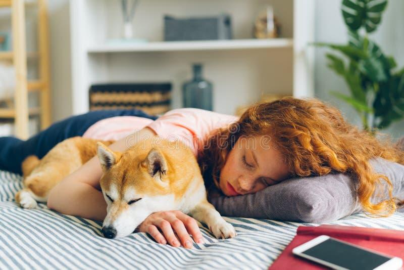 Pretty teenage girl sleeping at home hugging adorable shiba inu dog in sleep. Pretty teenage girl is sleeping at home hugging adorable shiba inu dog in sleep royalty free stock photos