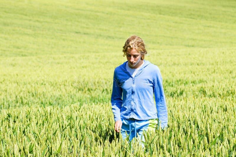 Pretty teenage girl walking in wheat field stock image
