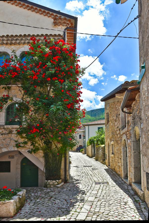 A street in Civitella Alfedena, a village in the Abruzzo National Park. royalty free stock photos