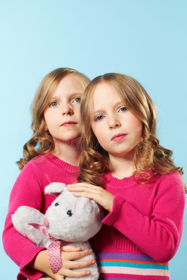 Download Pretty twins stock photo. Image of posh, preschooler - 25940438