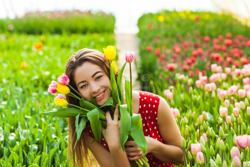 Pretty woman choosing flowers. Pretty woman choosing a bunch of fresh flowers in the greenhouse stock photography