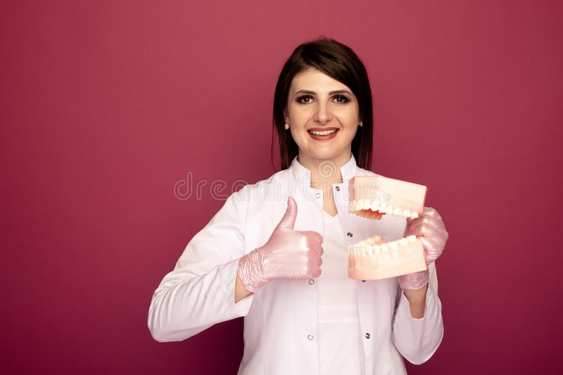 Pretty woman dentist with dental stuff in the dark pink studio. royalty free stock photos