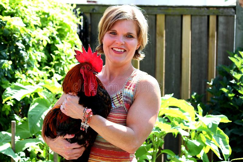 Pretty woman holding a Rooster. royalty free stock photos