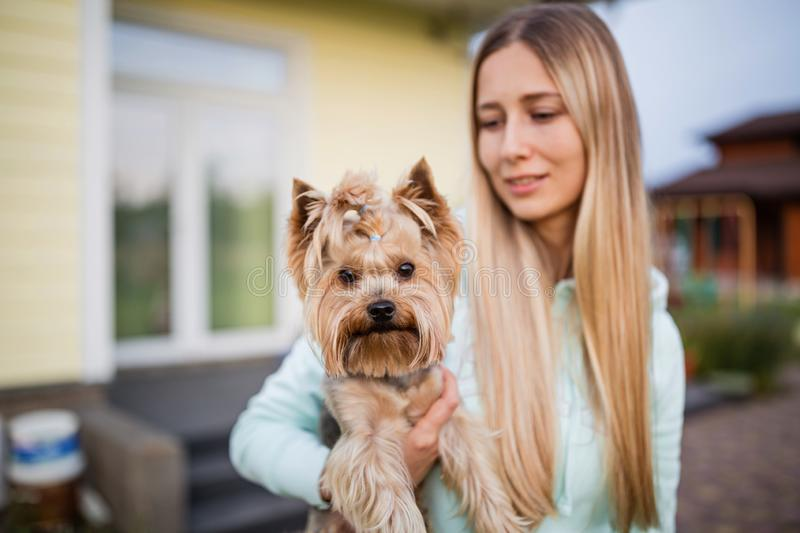 Pretty woman with long blonde hair holding small dog yorkshire terrier outdoor. Pretty woman with long blonde hair holding small dog yorkshire terrier stock photo