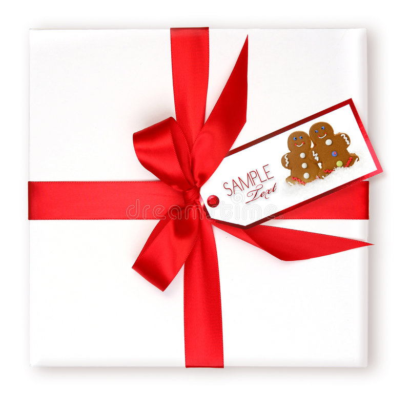 Pretty Wrapped Holiday Gift With Decorated Gift royalty free stock image