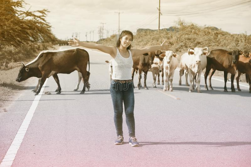 Pretty young Asian woman enjoy summer day with cow on a road. stock photography