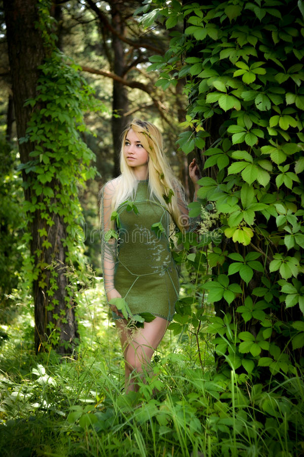 Pretty young blonde girl with long hair in green dress like an elf standing in the green forest where trees are enlaced with liana stock image
