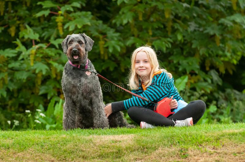 Pretty young blonde girl making eye contact while sitting on grass with well behaved black labradoodle dog on a leash royalty free stock photography
