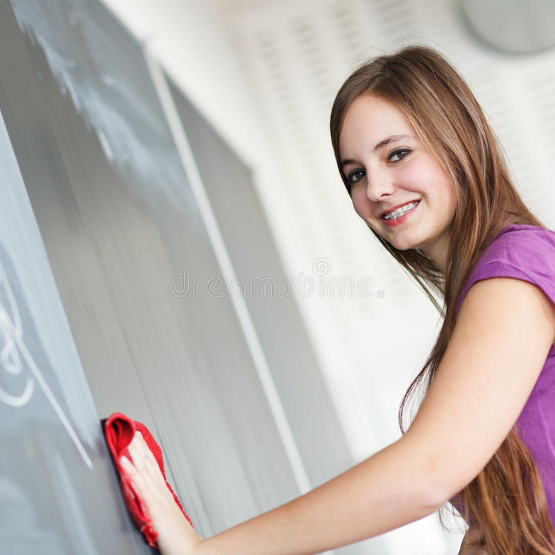 Pretty young college student writing on the chalkboard. /blackboard during a math class (color toned image; shallow DOF royalty free stock images