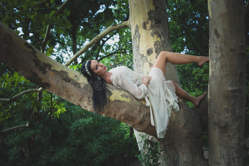 Pretty young dark hair woman in romantic dress barefoot lie on. Tree in wood or park summer day royalty free stock photography