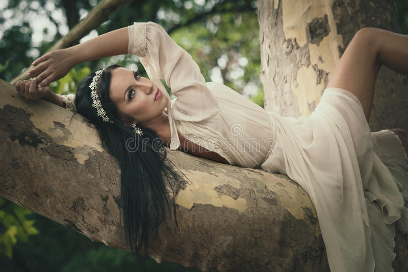 Pretty young dark hair woman in romantic dress lie on tree in. Wood or park summer day stock photography