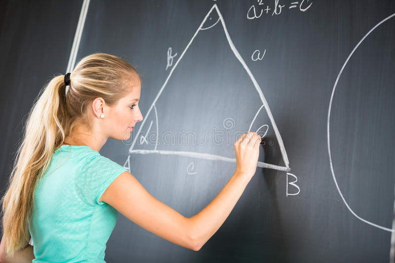 Pretty young elementary school/college teacher royalty free stock image