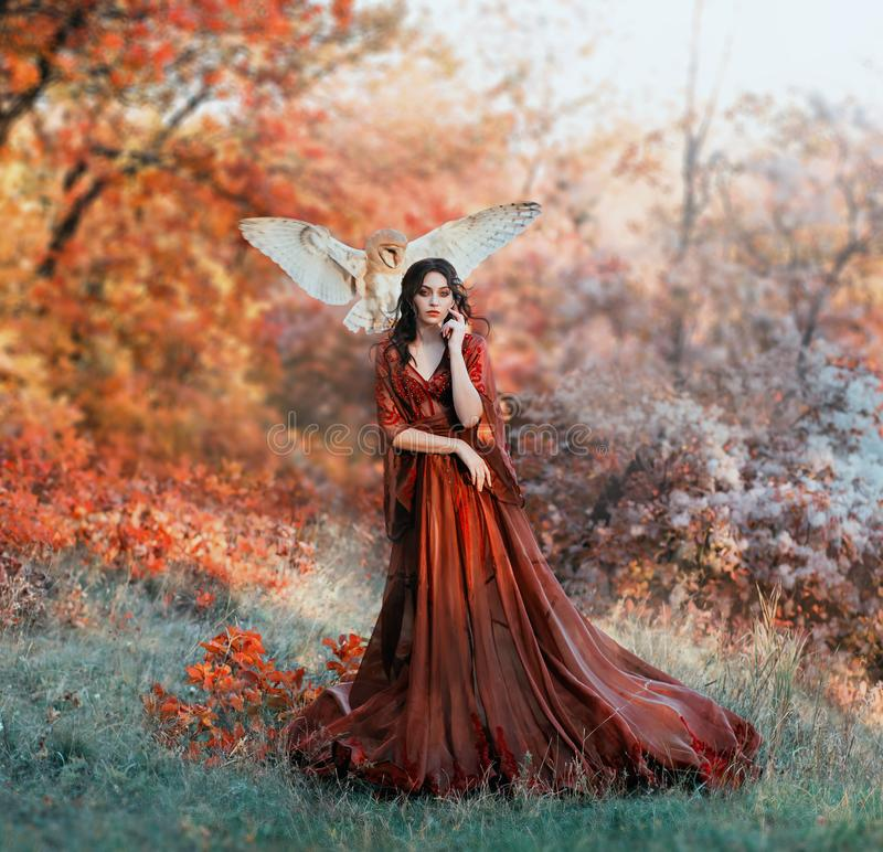 Pretty young girl with black hair in cold forest, orange foliage of trees royalty free stock photography