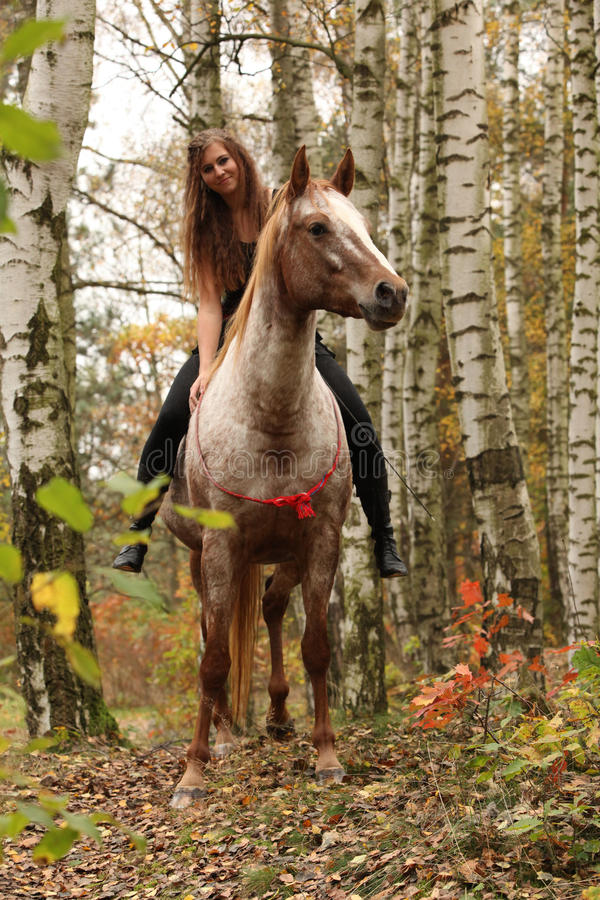 Pretty young girl riding a horse without any equipment in autumn. Pretty young girl riding a horse without any equipment in nice forest stock photography