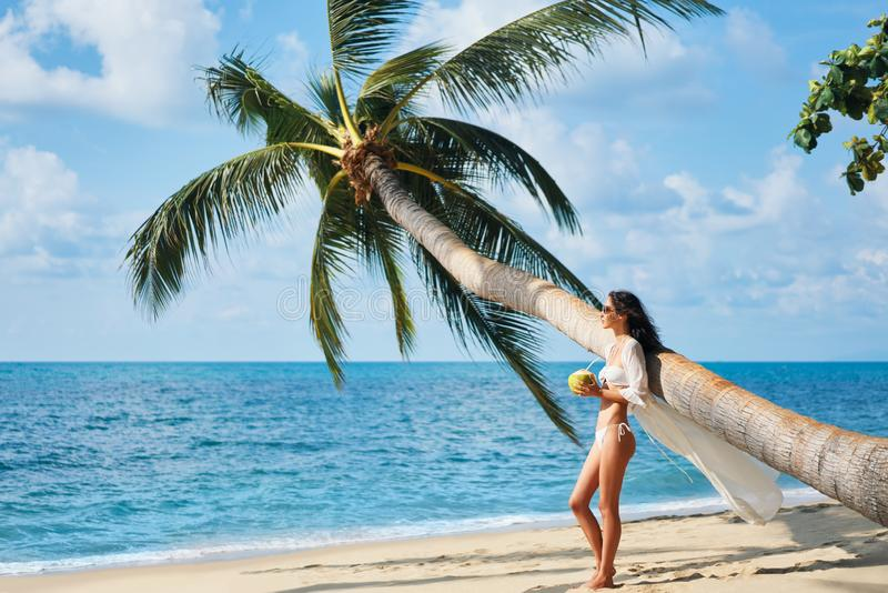 Pretty young woman enjoy her tropical beach vacation standing under palm tree stock photography