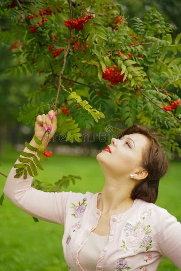 Pretty woman picking chokeberry in the country stock image