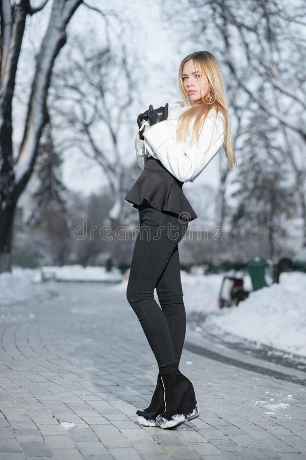 Pretty young woman posing in winter royalty free stock photos