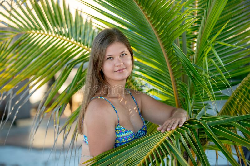 Pretty young woman under the palm tree. Pretty young woman wearing bikini standing under the palm tree on the beach in Florida, USA stock photography