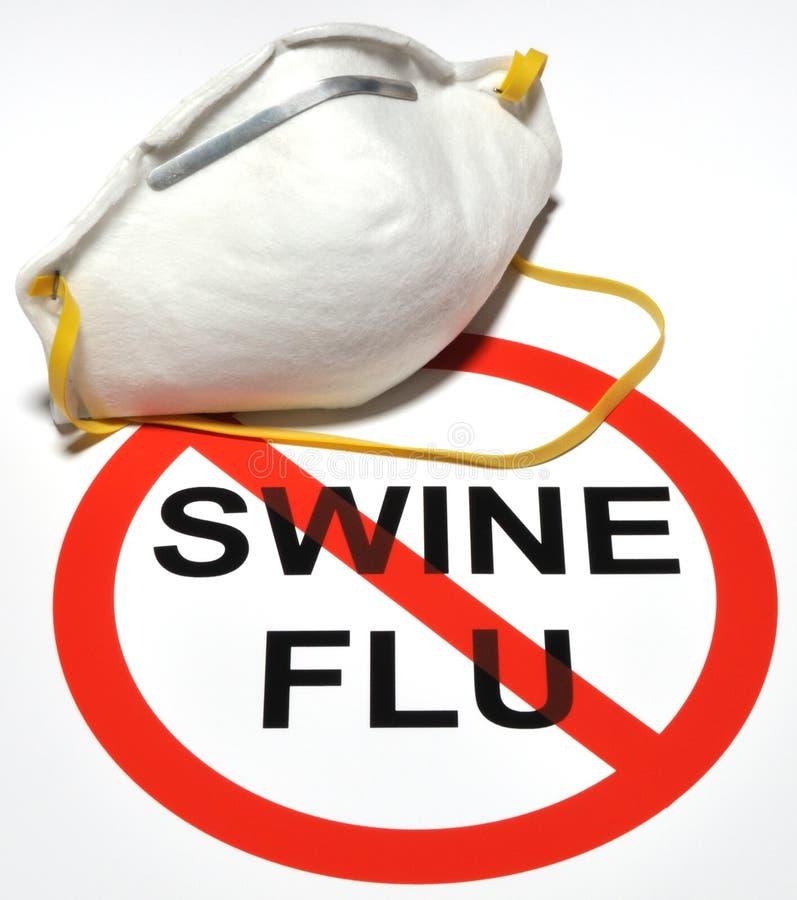 Prevenção da gripe dos suínos imagens de stock