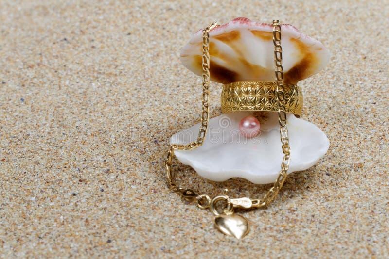 prezentów seashell dodatek specjalny obrazy stock