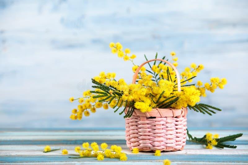 Prezent dla wiosna wakacji zdjęcia stock