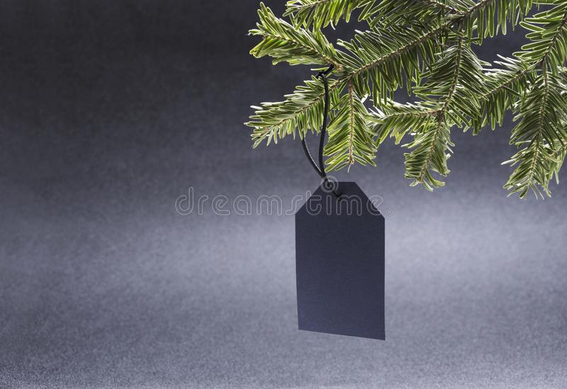 One blank price tag on the green fir treen.Concept of christmas sale, empty space for design. Price and sale tags on the fir tree against black background.Empty royalty free stock image