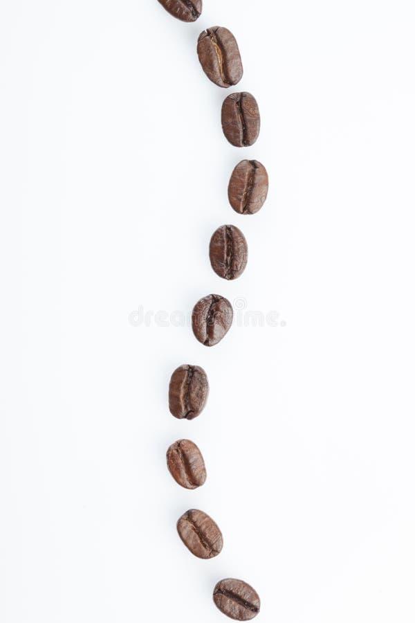 Prickig linje av kaffebönor royaltyfria foton