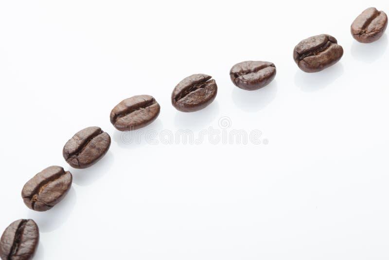 Prickig linje av kaffebönor royaltyfria bilder