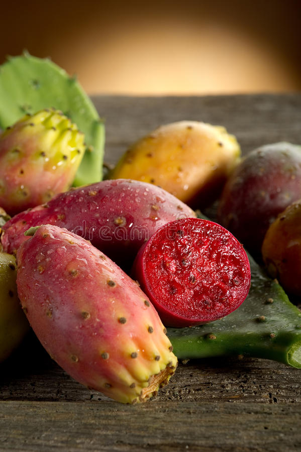 prickly pear fotografering för bildbyråer