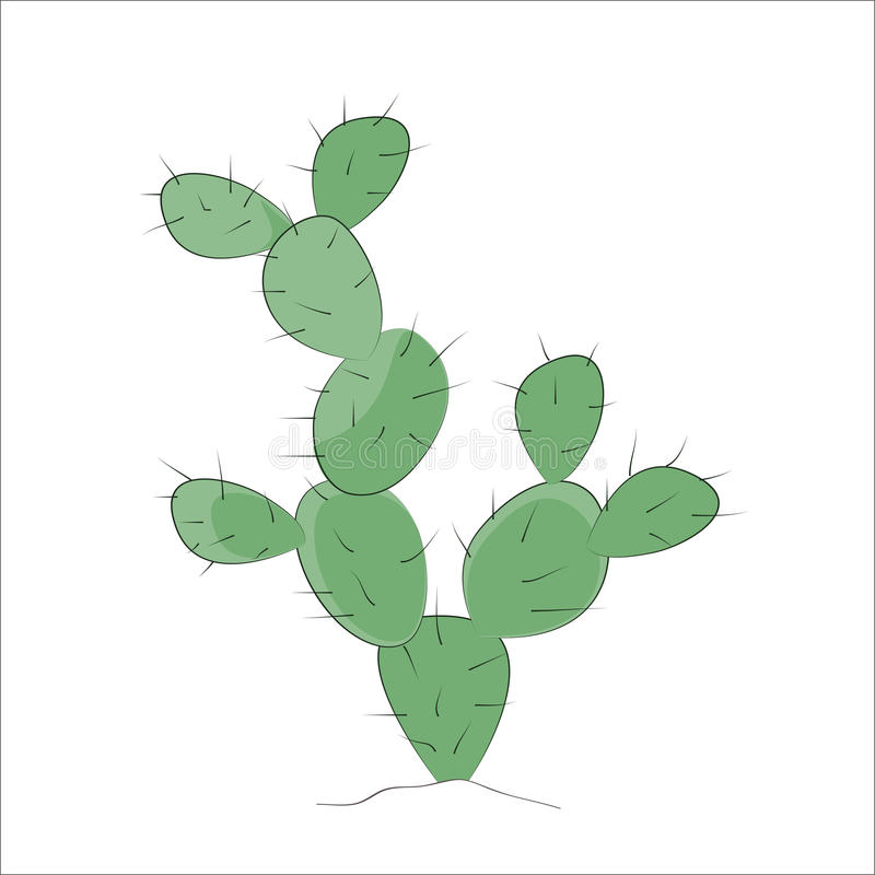 prickly pear cactus stock illustration illustration of