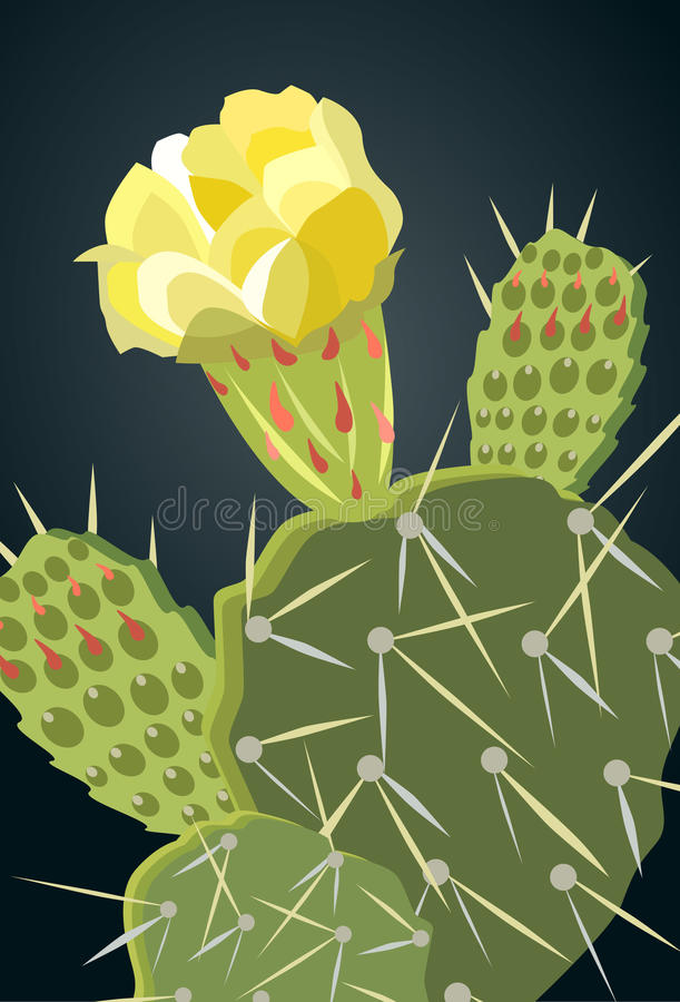 Free Prickly Pear Cactus Yellow Flower 1 Royalty Free Stock Image - 98874586