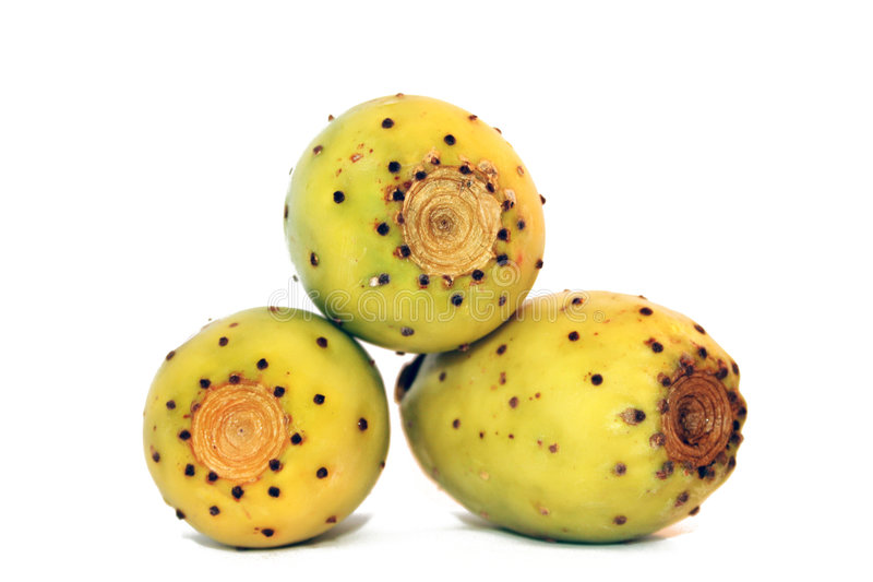 prickly pears arkivbild