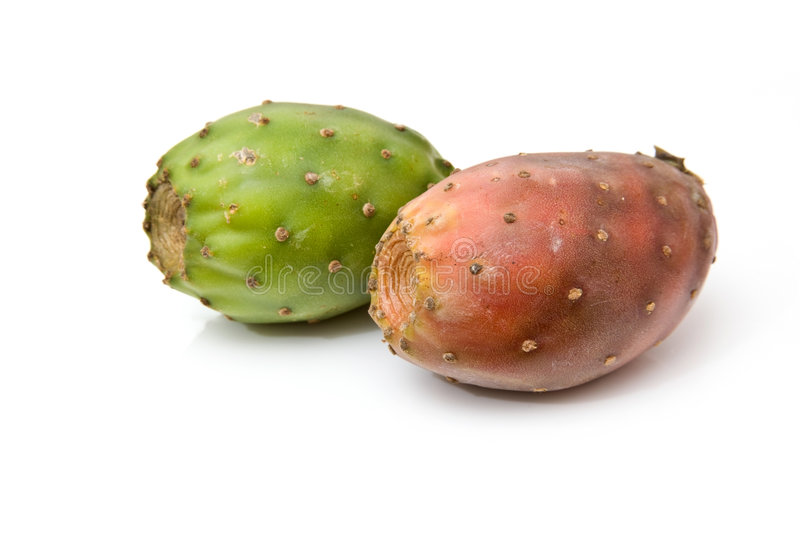 prickly pears arkivfoton